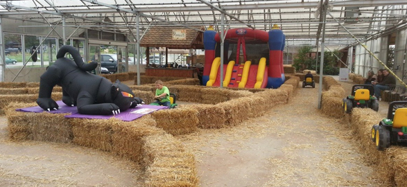 Cotant's Indoor Fall Fun